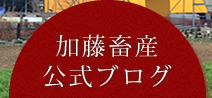 加藤畜産公式ブログ