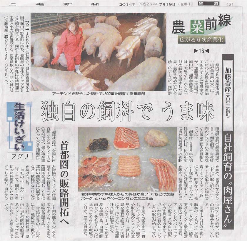 newspaper_20140718_s